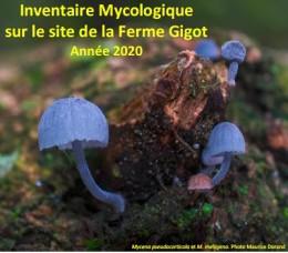 Image de l'actualité Inventaire Mycologique à la Ferme Gigot