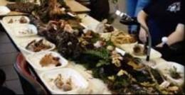 Image de l'actualité Présentation de champignons à Barberaz