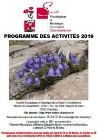 Programme des activités 2019