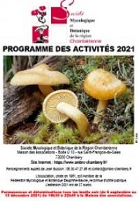 Programme des activités 2021